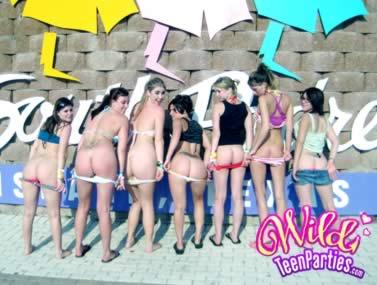 Wild Party HDVDG2654 1